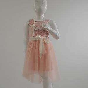 Pink and Violet  Dress